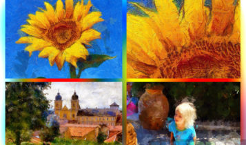 MediaChance Dynamic Auto Painter Pro Latest Version Download